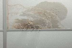 Water Damage Cleanup Columbus, water damage repair columbus