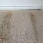 water damage restoration macon, water damage macon